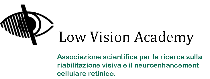 Low Vision Academy